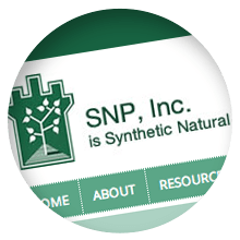SNP, Inc. Logo