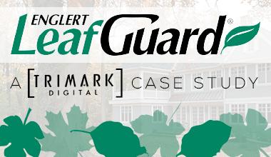 Leafguard Pic