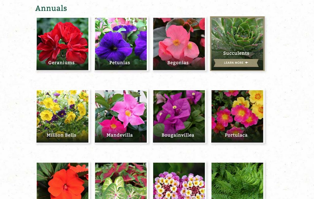 Screenshot of the Fairview Garden Center digital catalog